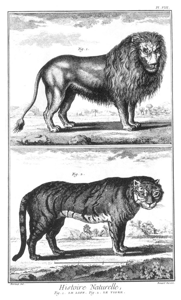 Natural History Lion and Tiger plate_23_2_8