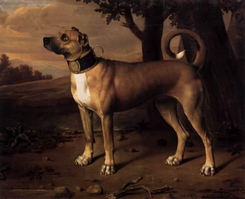 A chamber dog with a gilded collar, Brandenburg (Germany), 1705 by Johann Christof Merck