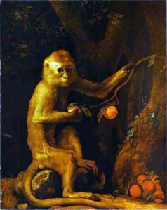 Green Monkey by George Stubbs, 1798.