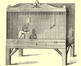 Illustration of a Monkey Cage from 'Notes on Pet Monkeys and How to Manage Them,' 1888.