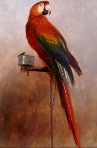 Study of a Parrot by George Cole, (1858).