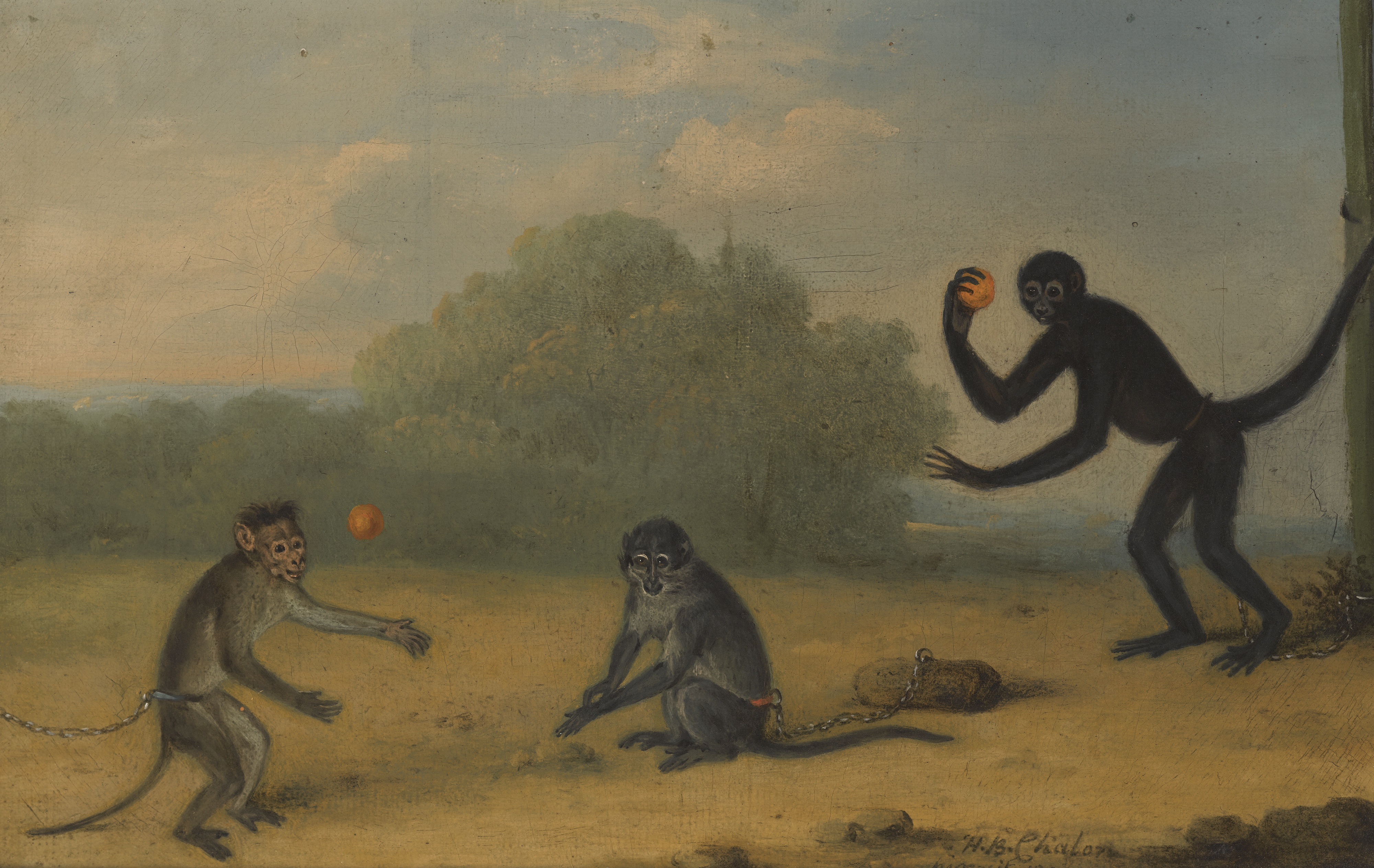 The plight of the pet monkey in 19th century literature for Ink monkey press