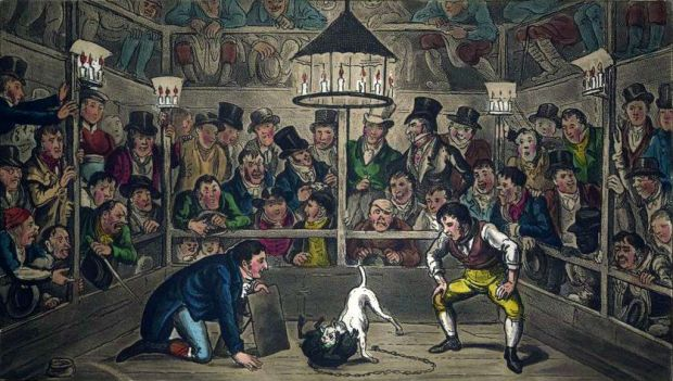 Tom & Jerry sporting their Blunt on the Phenomenon monkey Jacco Macacco at the Westminster Pit by George and Isaac Robert Cruikshank, 1821.