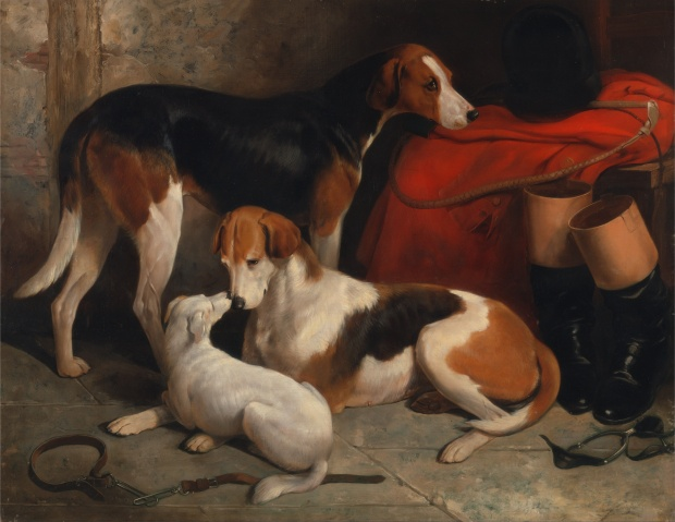 A Couple of Foxhounds with a Terrier, the property of Lord Henry Bentinck , by William Barraud, 1845.