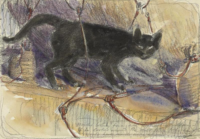 Black Tom, the Captain's Imp: A 19th Century Seafaring Cat