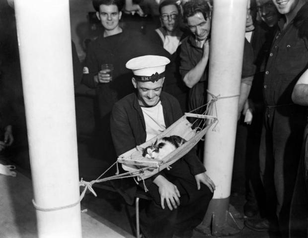 Sailors surround the ship's cat