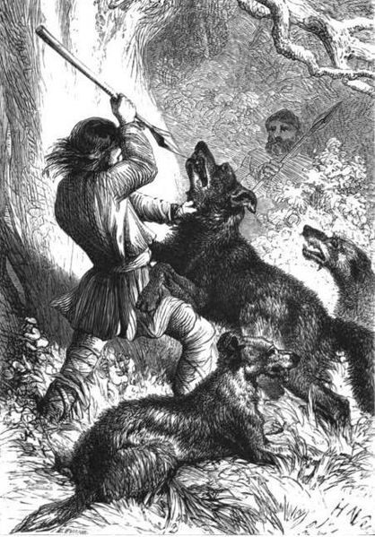 Wolfhounds hunting wolves.