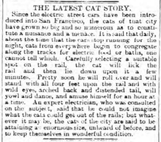 Edinburgh Evening News, Sept. 6, 1893.(©2015 British Newspaper Archive)