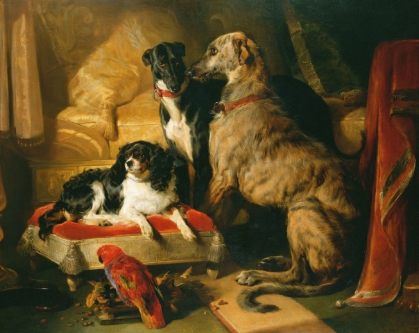 hector nero and dash with the parrot lory by edwin henry landseer 1838