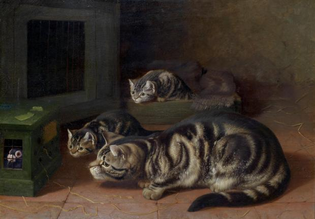 Curiosity by Horatio Henry Couldery, 1893.