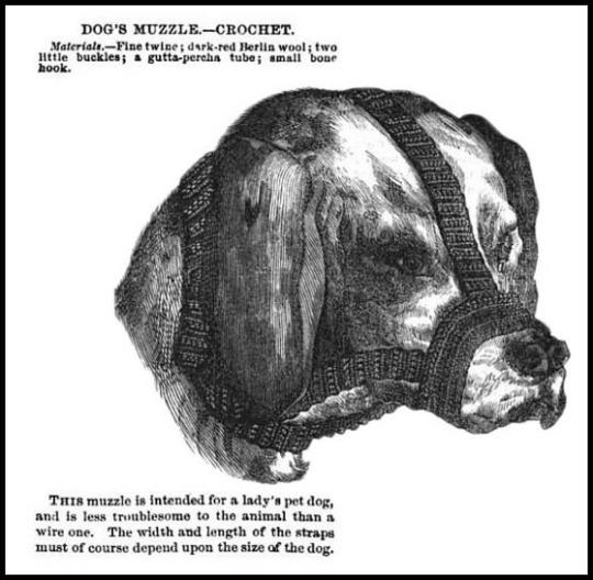 Dog Muzzle Crochet, Godey's Lady's Book, 1868.
