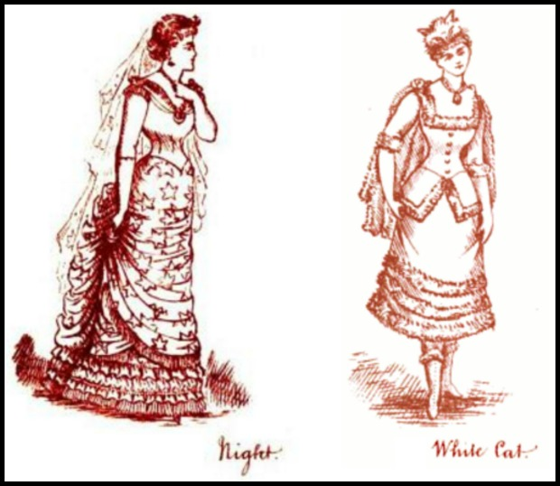 night and white cat fancy dresses described 18801