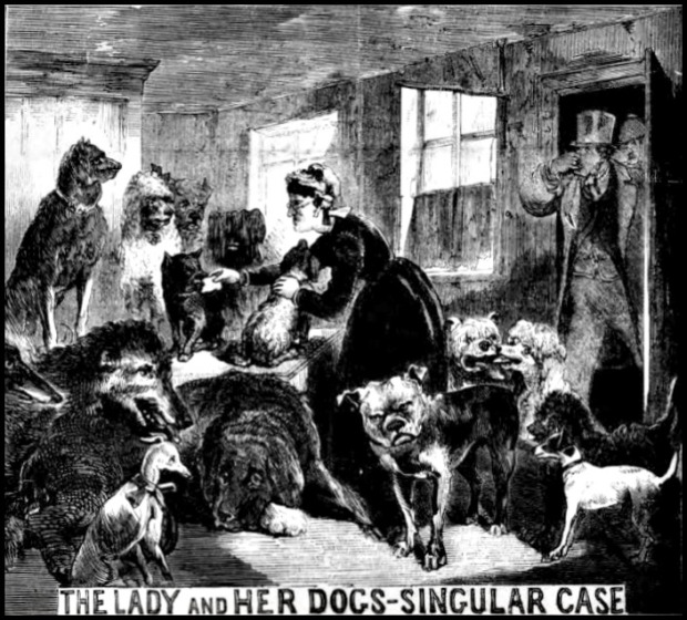 Illustrated Police News, June 17, 1871.