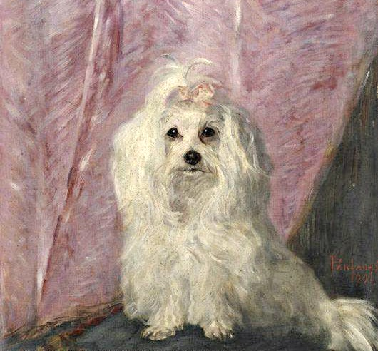 Portrait of a Pet Dog called Pepi by Vilma Lwoff-Parlaghy, (1863-1923).