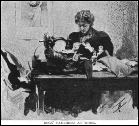 Dogs' Tailoress at Work, The Strand Magazine, 1896.