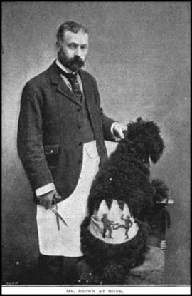 Mr. Brown at Work, The Strand Magazine, 1896.
