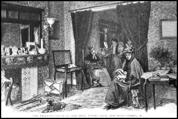 the reception room at the dogs toilet club the strand magazine 1896